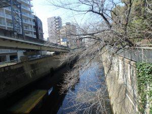 2一休橋 (2)