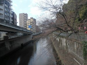 ②一休橋 (2)