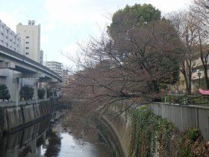 ①江戸川橋 (1)