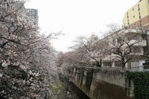 5豊橋 (1)