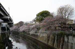 1江戸川橋 (2)