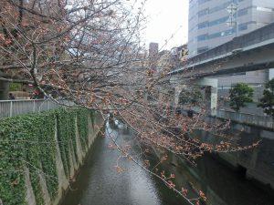 ②一休橋 (1)