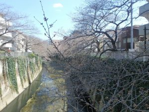 5豊橋 (2)