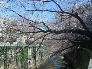●5ゆたか橋(3)