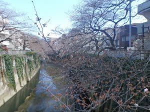 5ゆたか橋 (2)