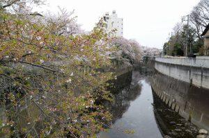 4駒塚橋 (1)