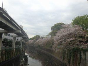 1江戸川橋 (1)