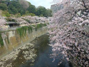 4駒塚橋 (2)