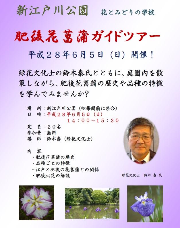 花菖蒲ガイドチラシ